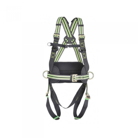 Two-point harness with positioning belt