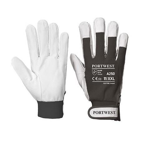 Tergsus Glove