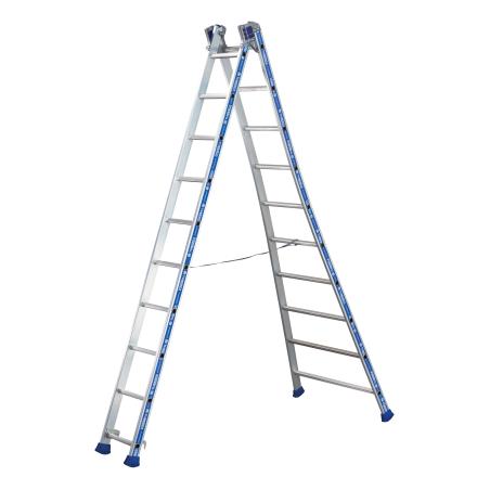 2-section platinum combination ladder