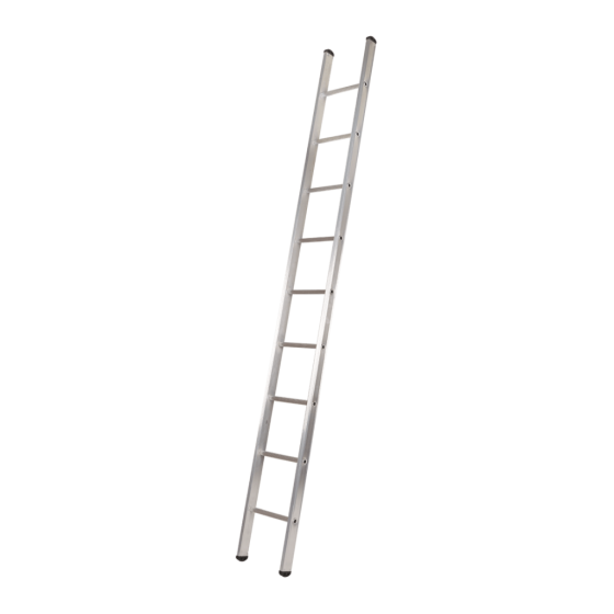 Eco single ladder