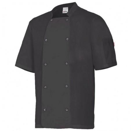 Chef Jacket Short Sleeves 405205