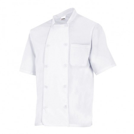 Chef Jacket Short Sleeves 432