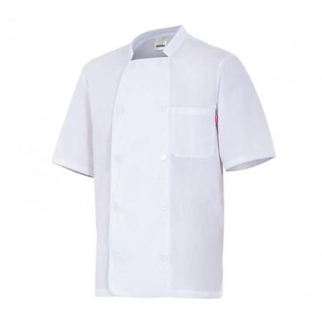 Chef Jacket Popeline Short Sleeves 405201