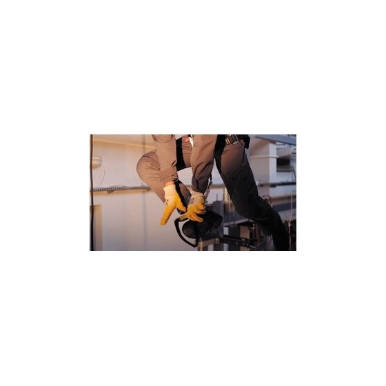 D12 - End of road reserved for public transport vehicles